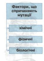 Причини мутацій